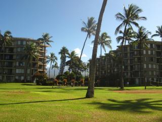 Maui Beachfront Condo - Free Wifi /Sleeps 6, Kihei