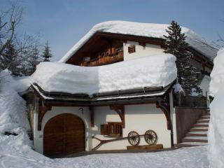 Chalet Runca First Floor Apartment