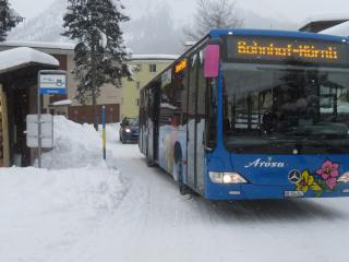 Bus stops 20m from the chalet