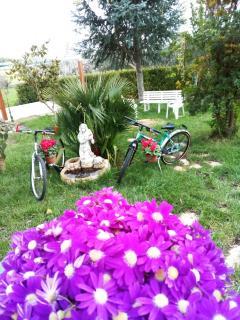 Giardino con bici