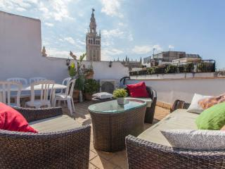 Two rooms Apartment with Terrace beside Cathedral, Seville