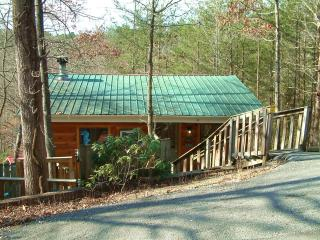 Apple Jack Cabin   1Br  1 mile from Pigeon Forge
