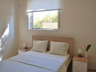 Newly renovated, apartment Geraniums, Rafina