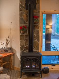 Jotul propane fireplace with remote control keeps it warm and cozy on a cold day