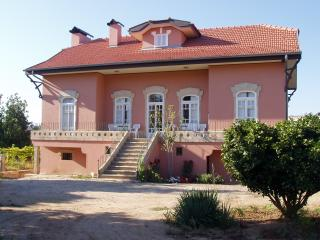Casa Caldeira Historic house enjoy the wine route, Moncao