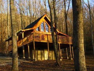 Help The Smokies Recovery Special--January--  April 10,2017 $110.00 per night, Pigeon Forge