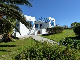 Tinos Luxury Family Villa, Exomvourgo