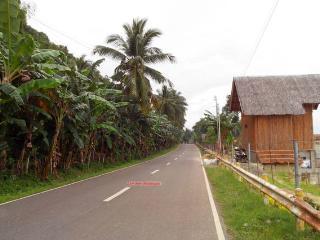 Bamboo Beachhouse 1 Malabuyoc, Moalboal