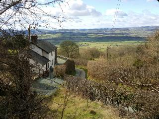 Welshpool, holiday cottage rental, Powys