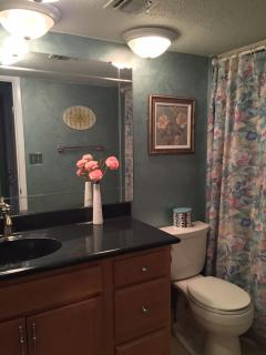 Well appointed, private Master Bath (updated)!