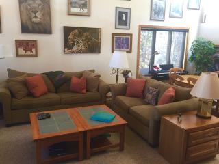 CONDO WITH STUNNING MOUNTAIN VIEWS, SPECIAL RATE!, Keystone