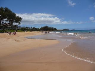 Updated 1st Floor Maui condo (sleeps 4) in Kihei