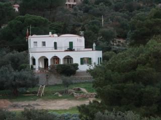 Piano Terra  in bellissima villa in riva al mare, Isola Del Giglio