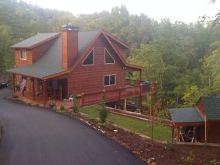 Last Minute Cancellation - 2-7 nights AUG 1-7, Blue Ridge