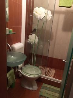 Master Bedroom toilet.