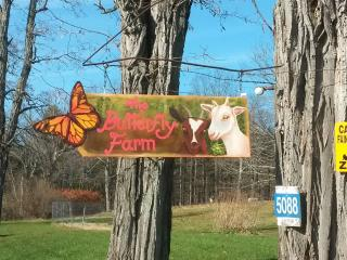 The Butterfly Farm Annex, East Durham