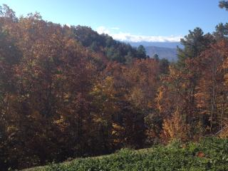 Sleep in the Clouds!  Stay in the Mountains!, Sevierville