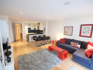 Perfect Long Term Luxury Apt., Dublin