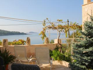 Sea view Villa close to the beach, Cavtat