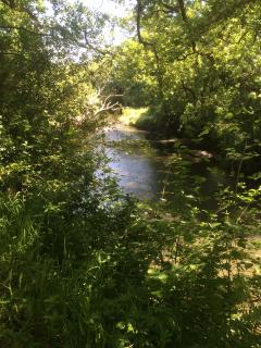 The river Torridge which is within easy walking distance