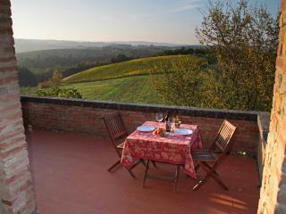 """THE ONE"", Premium Farmhouse Apt. San Gimignano"