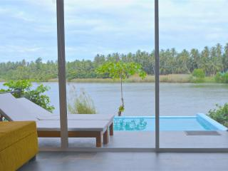 Standard Villa with Infinity-Edge Plunge Pool, Negombo