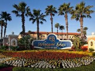 Beautiful, luxerious vacation resort rental, Orlando