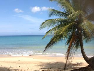 Villa Playa - Sleeps 20, Aguadilla
