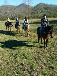 Nearby Horseback Riding Stables!