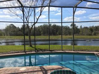Beautiful home with pool and private view of gator, Clermont