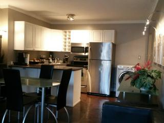 BEAUTIFUL DOWNTOWN APARTMENT, Edmonton
