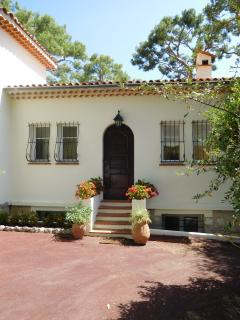 In this typical picturesque upper floor villa, pine trees and mediteranean garden