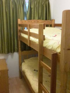 Adult size Bunk beds