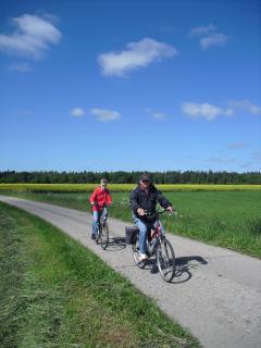 Radfahren in Ostfriesland
