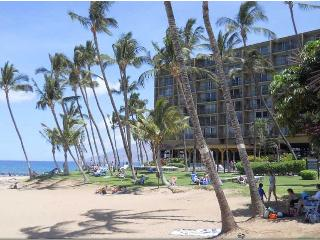 Beautiful Condo on Best Maui Beach!