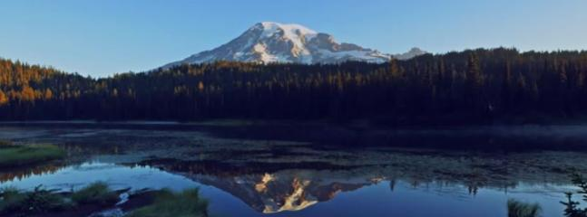 Reflection of Mt Rainier in Lake.