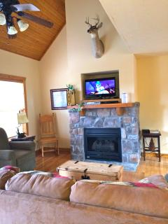 Living Room with fireplace, TV with cable, WIFI, Queen Sleeper