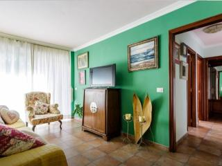 AMAZING APARTMENT CANARY, Los Llanos de Aridane