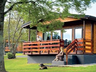 Charming lodges in Newton Stewart - Birch Lodge 12