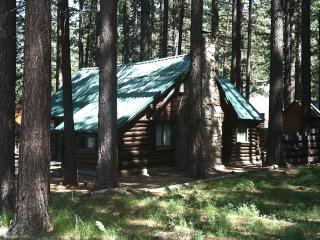 Authentic Log Cabin! 2 Blocks From The Lake