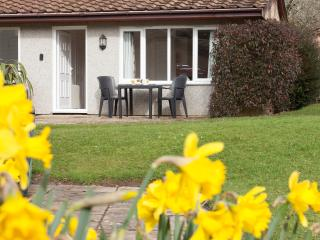 Hengar Manor Country Park, Holiday Bungalow