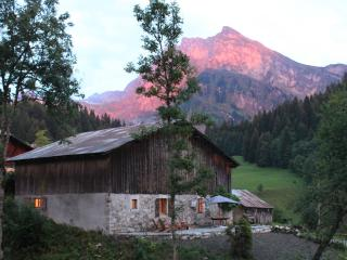 Beautiful Samoens Chalet with Incredible Views