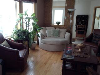 Beautiful, furnished, executive townhouse, Edmonton
