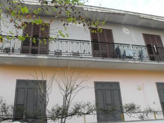 maresole, Avola