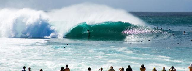 Famous Pipeline Pro surfing contest in the winter. 5 min walk from the property.