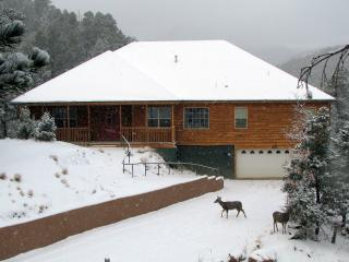 Twin Mountain Cabin - Secluded, Upper Canyon Home, Ruidoso