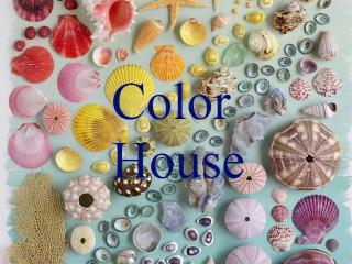 Welcome to Cascais! Color House