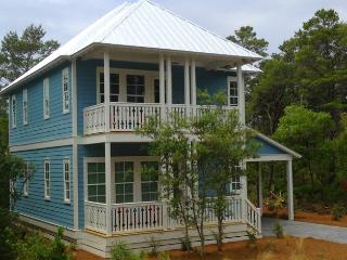 New Custom Home with 2 Master Suites! 8 Bikes!, Santa Rosa Beach