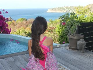 St Barth Private Pool studio and Amazing Sea View, Anse de Lorient