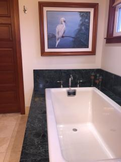 Upper Master Bath: Deep soaking tub with stone surround and natural light.